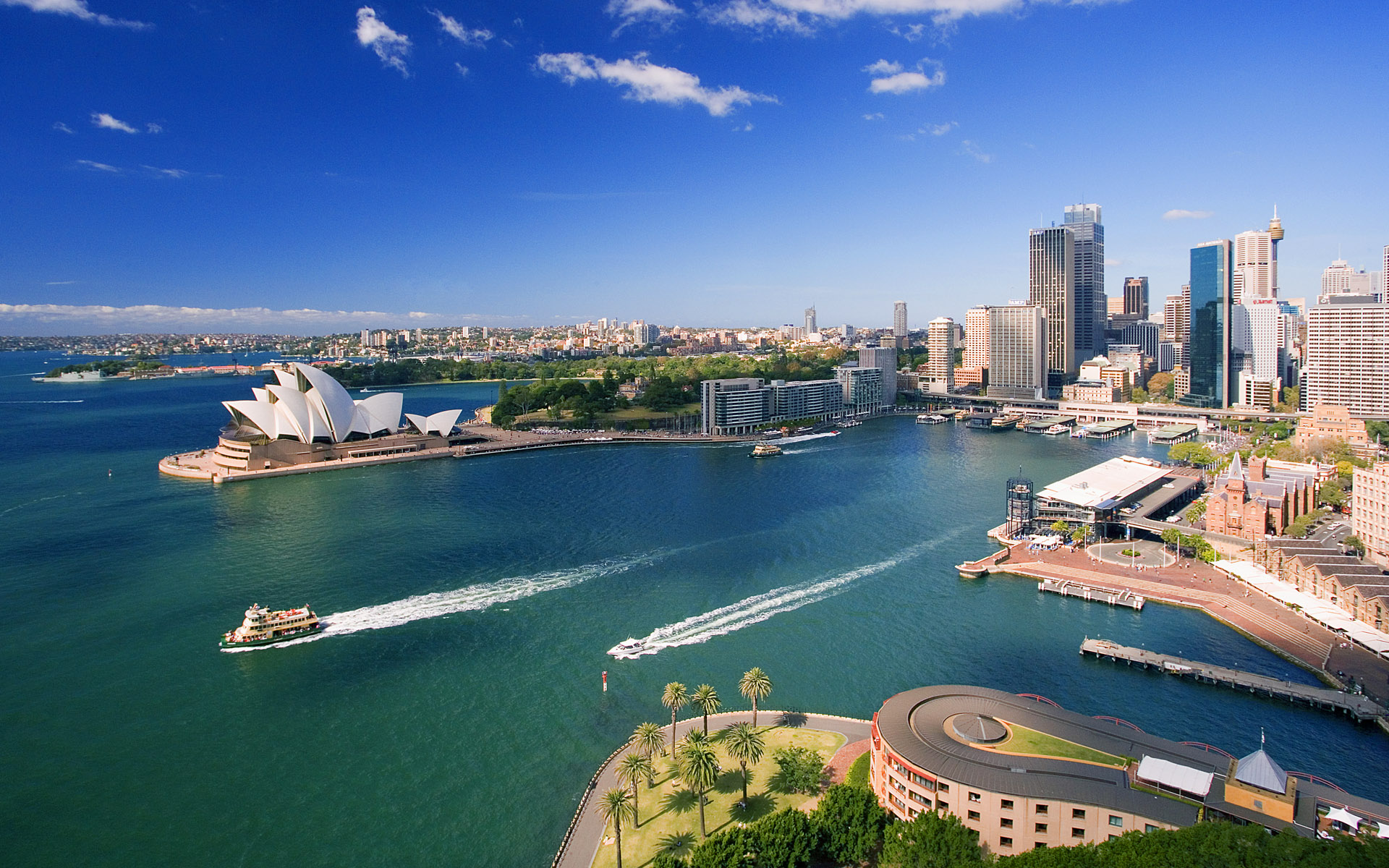 7 Reasons Startups are expanding to Sydney
